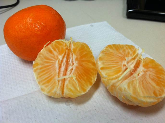 Eating clementines like it's my job!