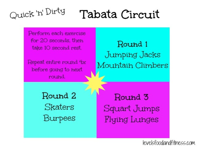 Quick n Dirty Tabata Circuit