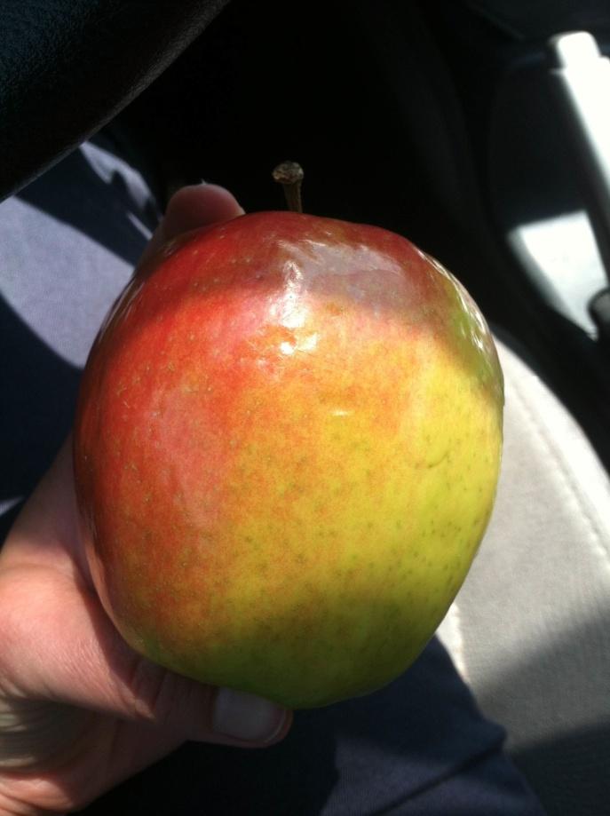 WIAW6.18_apple